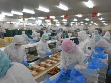 わらべや日洋株式会社 岩手工場_10206の画像・写真