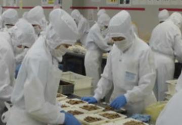 わらべや日洋食品株式会社 上田工場_10116の画像・写真